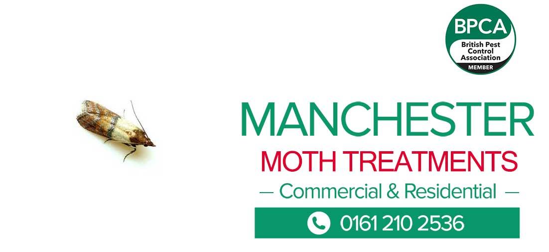 moth pest control Manchester